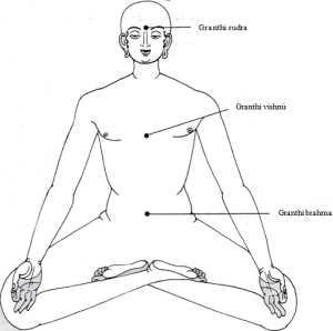 Los nudos localizados en los Chakras, Granthi brahma Los Chakras