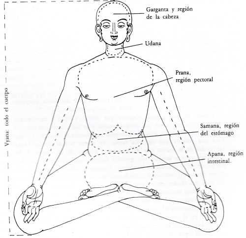 Que es el Tantra Yoga Los Chakras