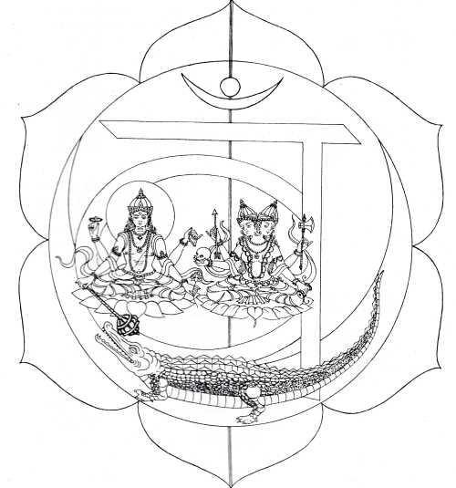 Segundo Chakra, Chakra svadhisthana Los Chakras